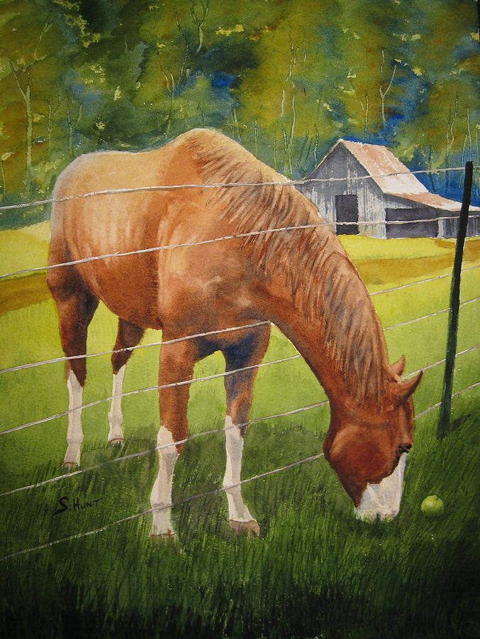 Horse Painting - Quiet Comfort by Shirley Braithwaite Hunt