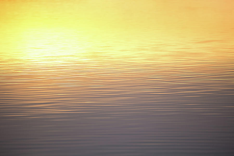 Sunset Photograph - Quiet Reflection by Penny Meyers