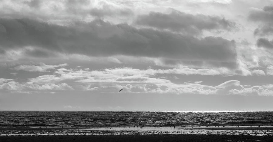 Black And White Photograph - Quiet Shores After the Storm by Trance Blackman