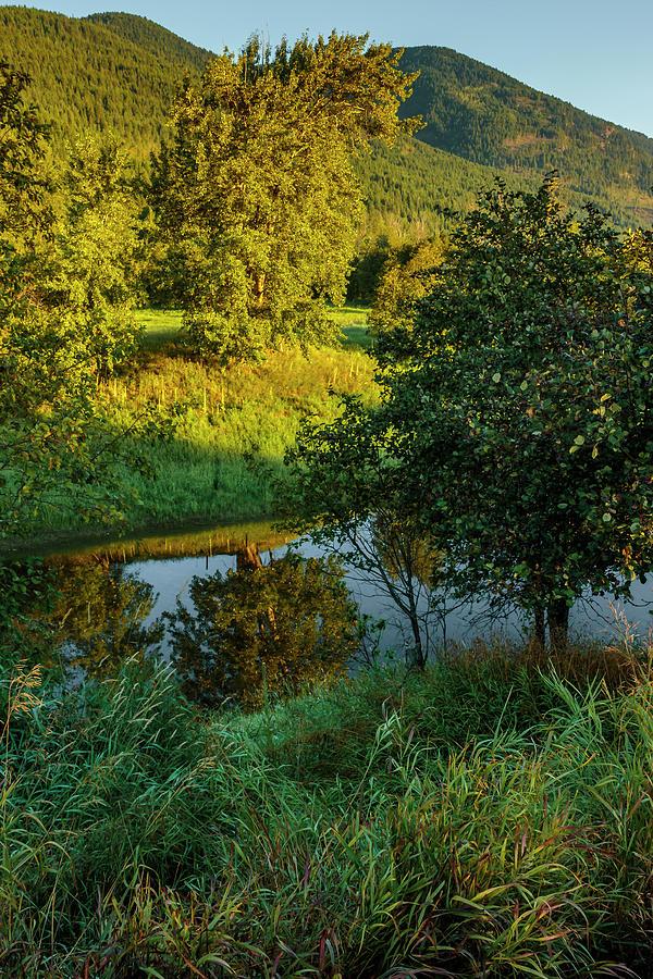 Quiet Summer Morning by Albert Seger