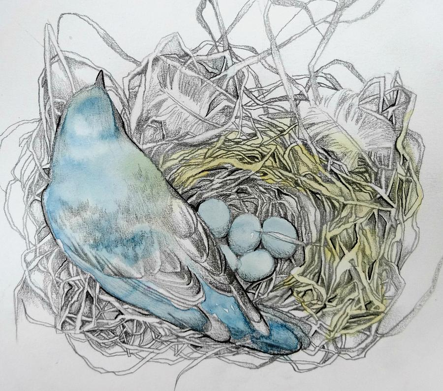 Bird Drawing - Quiet Time by Rose Legge