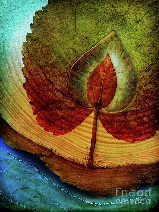 Tree Mixed Media - Quiet Waters by Shevon Johnson