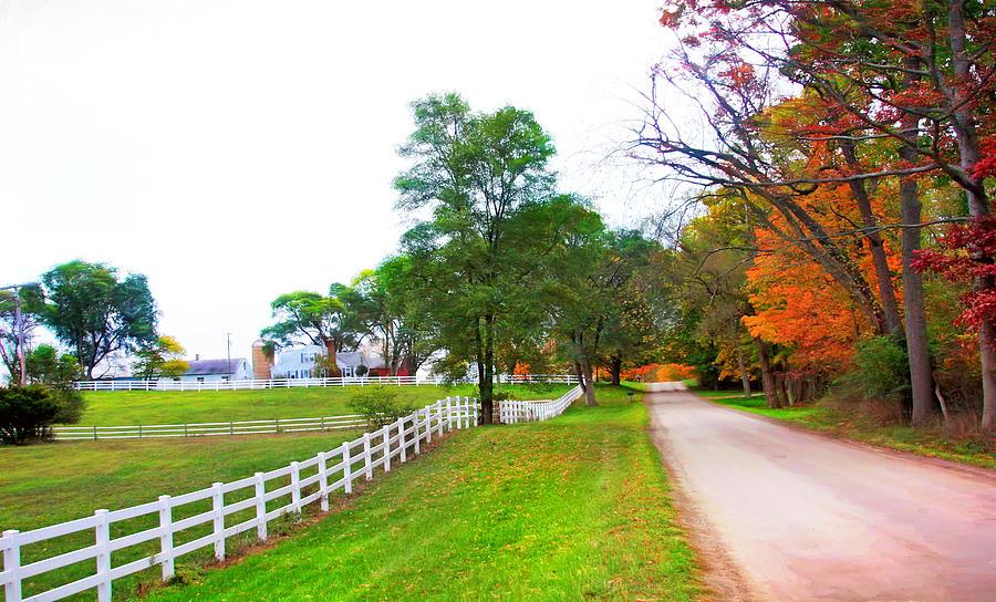 Quintessence Of Autumn Photograph