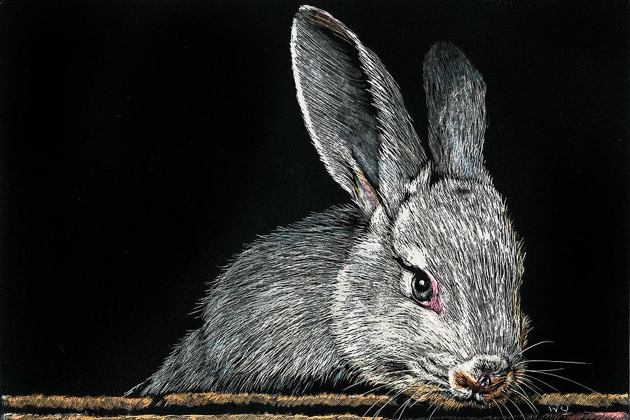 Rabbit by William Underwood