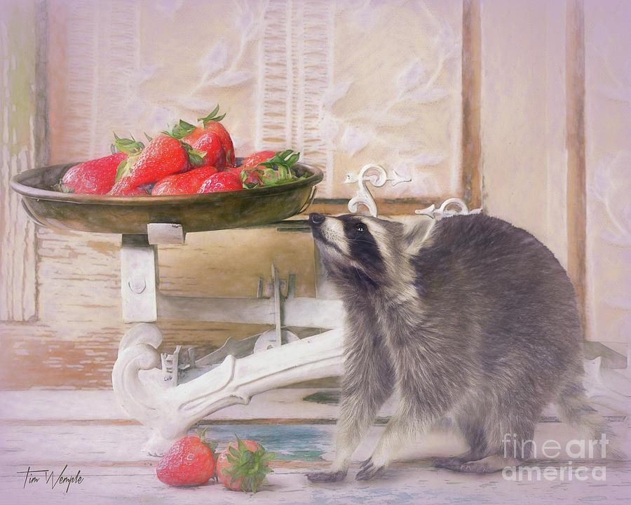 Raccoon Digital Art - Raccoon And Strawberries by Tim Wemple