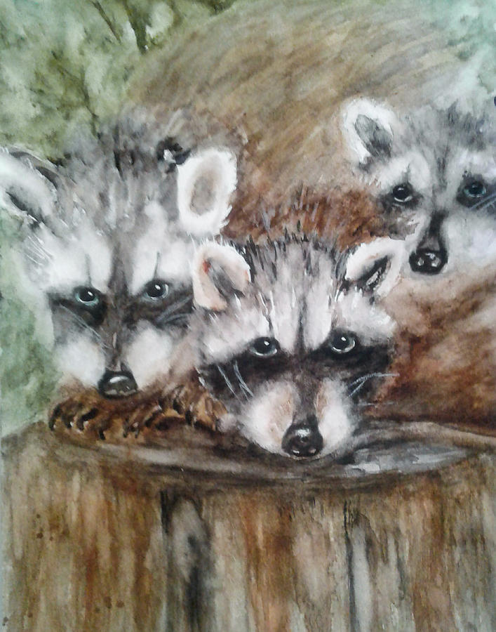Painting Painting - Raccoon Babies By Christine Lites by Allen Sheffield