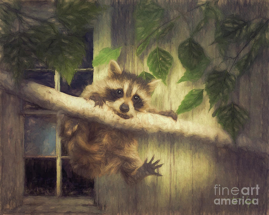 Raccoon Digital Art - Raccoon Hangin Around by Tim Wemple