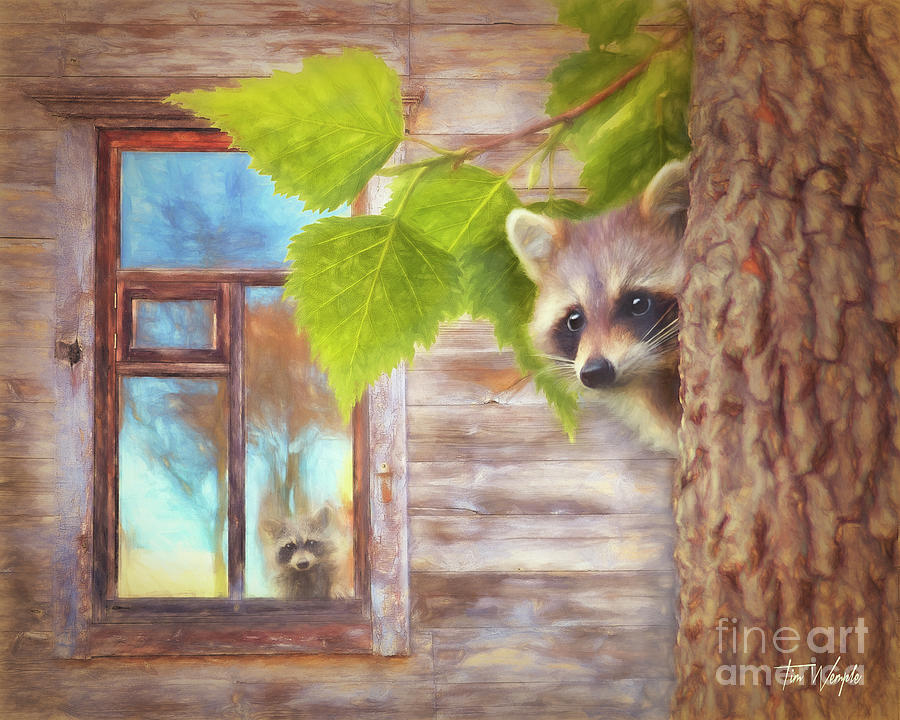 Raccoon Digital Art - Raccoon Lookout by Tim Wemple