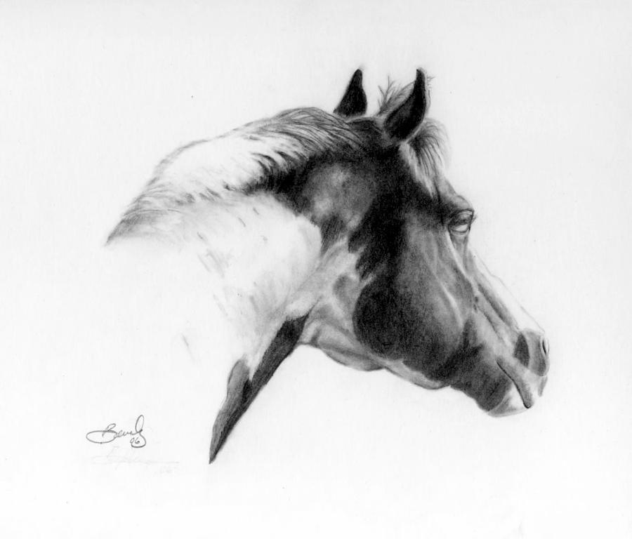 Pencil Drawing Drawing - Racer by Beverly Johnson