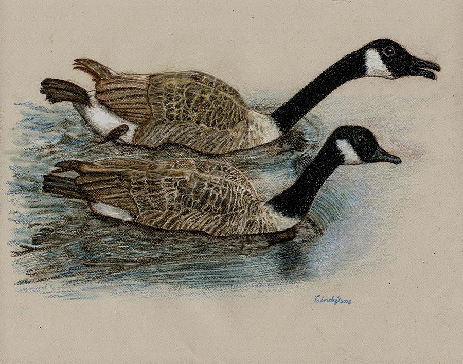 Goose Drawing - Racing Geese by Cynthia  Lanka