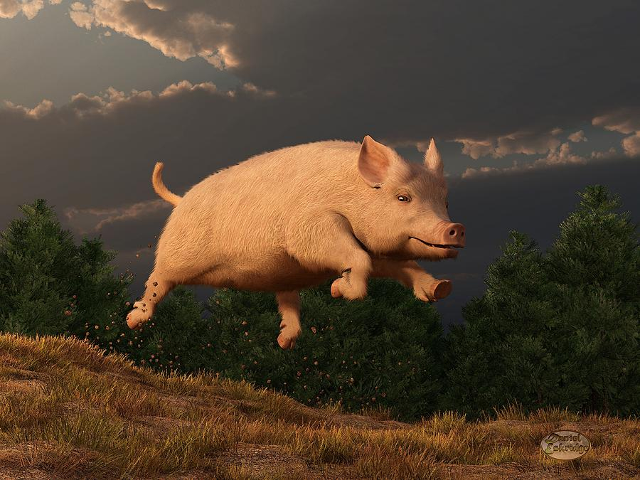 Pig Digital Art - Racing Pig by Daniel Eskridge