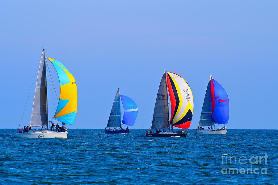 Racing Yachts On The Bay by Ronald Rockman