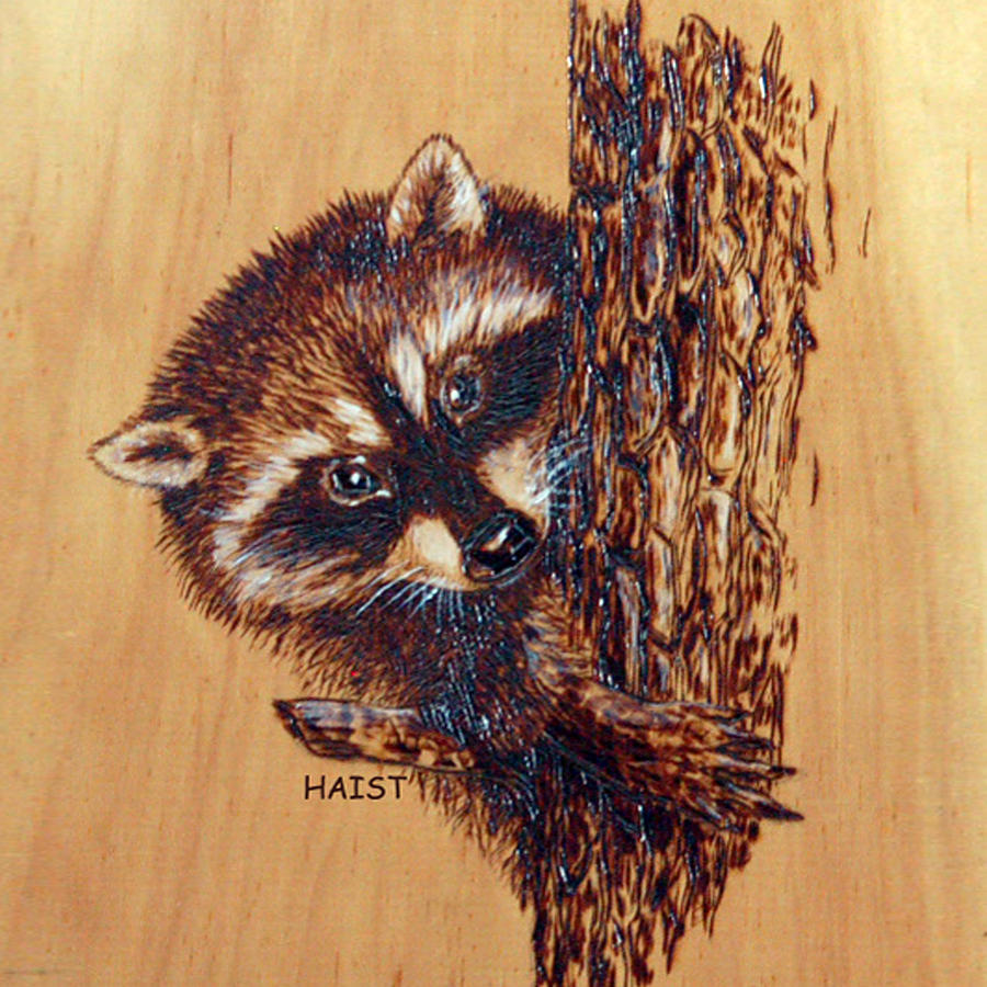 Racoon 2Pillow/bag by Ron Haist