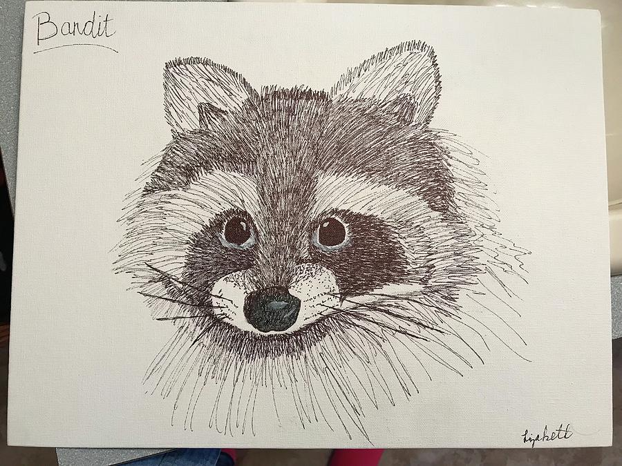 Racoon Drawing by Elizabeth Hodges