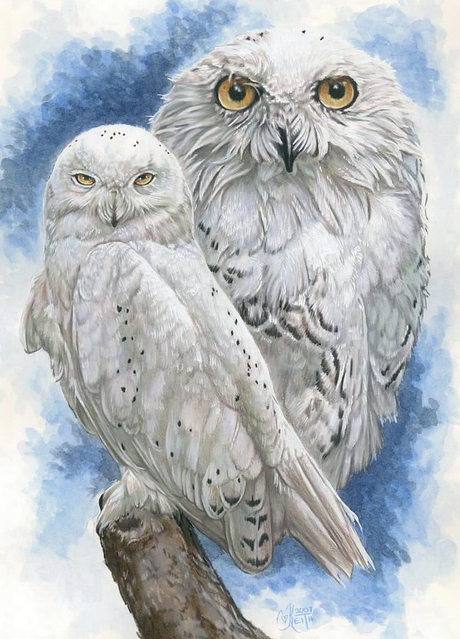 Snowy Owl Mixed Media - Radiant by Barbara Keith
