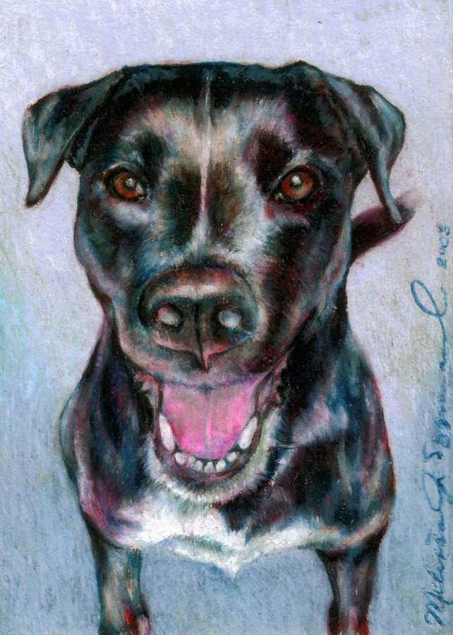 Dog Drawing - Radiant Radley by Melissa J Szymanski