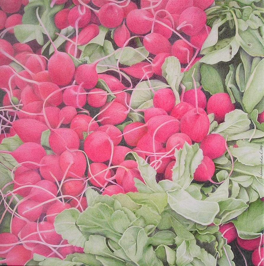 Vegetables Drawing - Radishes by Henny adank