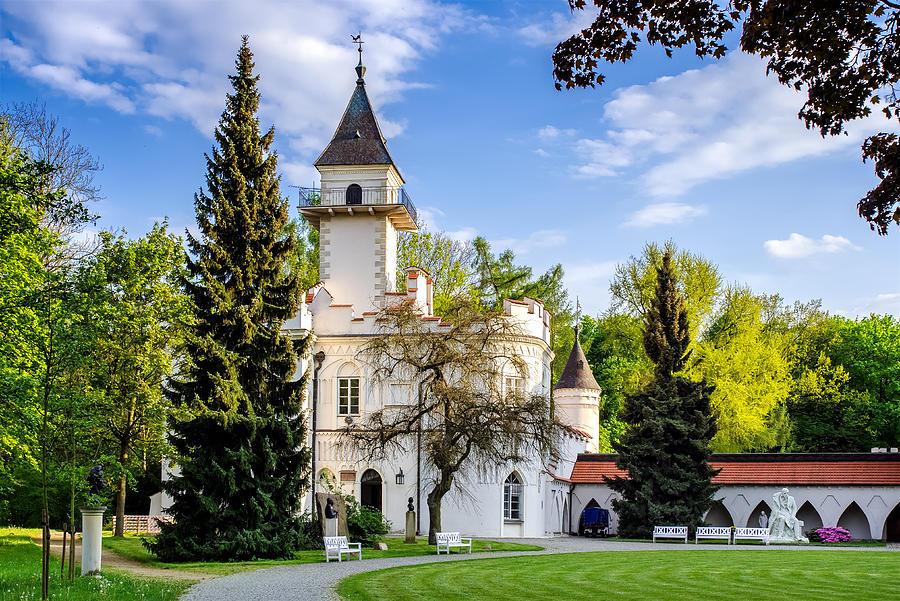 Palace Photograph - Radziejowice Castle by Tomasz Dziubinski