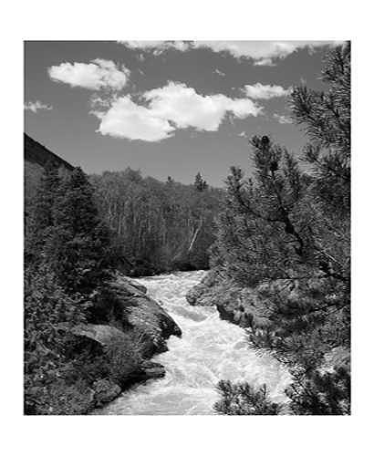River Photograph - Raging River by William Love