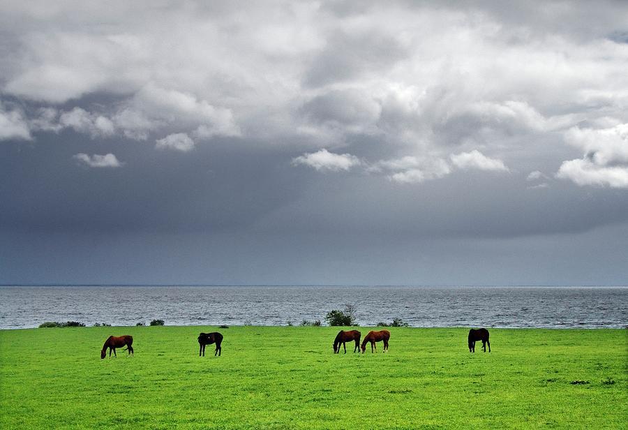 Rain Showers Cross Lough Neagh Near Coagh, County Tyrone, Northern ...