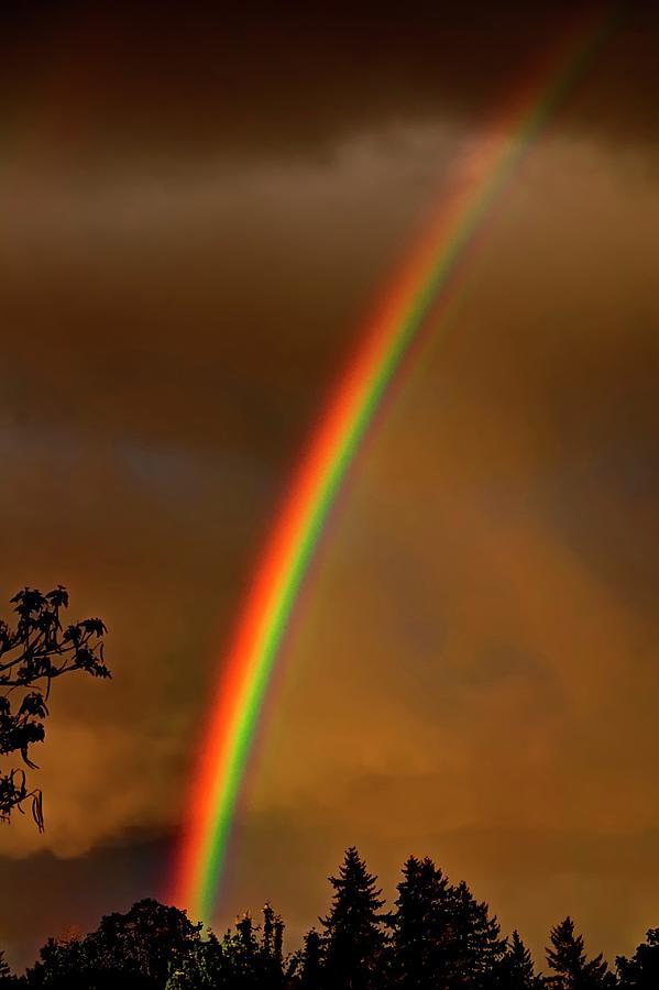 Rainbow 1 Photograph