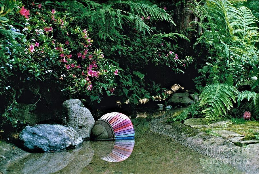 Landscape Photograph - Rainbow 2 by Delores Malcomson