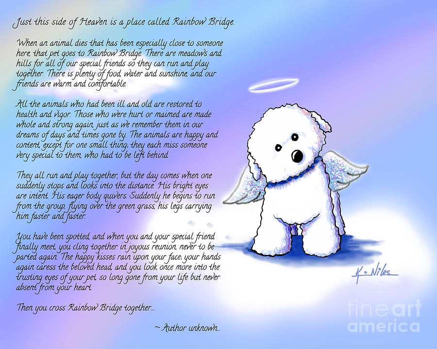 Rainbow Bridge Bichon Angel Digital Art By Kim Niles