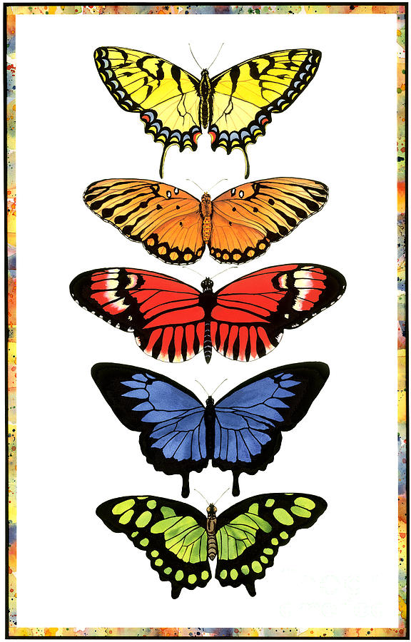 Butterflies Painting - Rainbow Butterflies by Lucy Arnold
