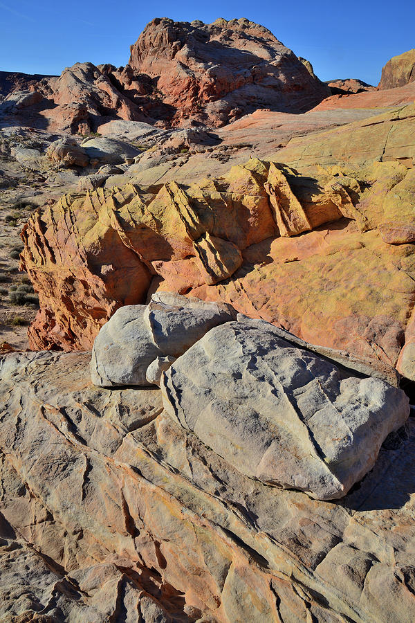 Rainbow Colors Of Valley Of Fire Photograph