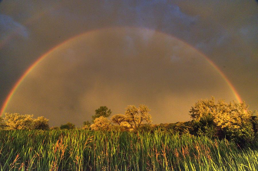 Rainbow by Dave Rennie