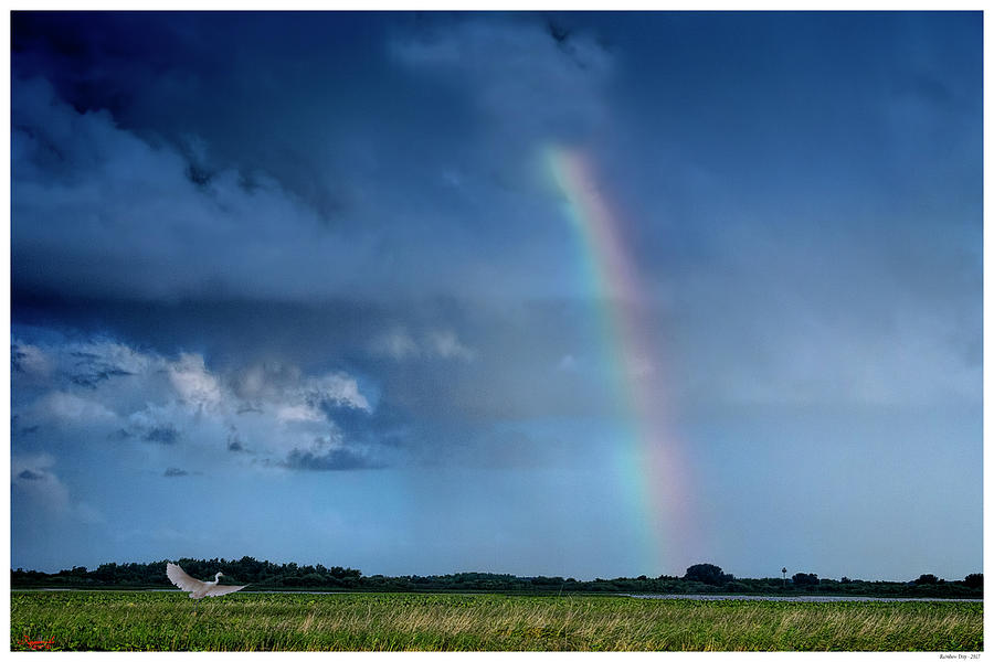 Rainbow Day by Rogermike Wilson