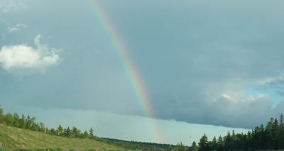 Rainbow Photograph - Rainbow by Donna Ryant