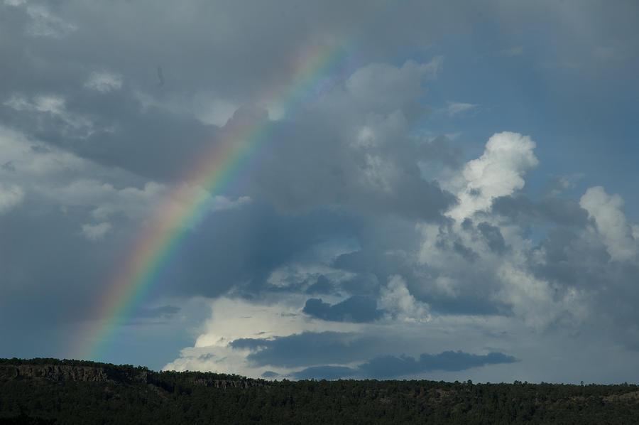 Landscape Photograph - Rainbow by Fern Logan