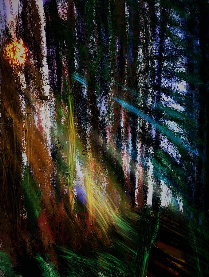 Rainbow Digital Art - Rainbow Forest Tilted by Kab