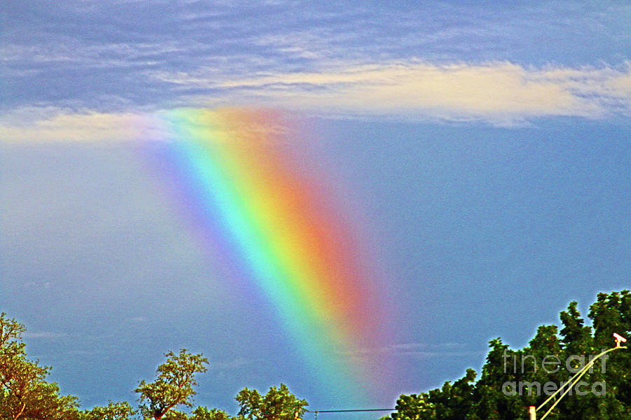Rainbow In The Sky Photograph