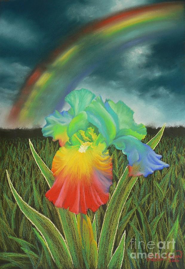 Rainbow Iris Pastel by Louise Green