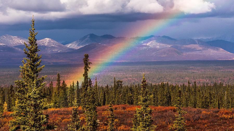Rainbow Photograph - Rainbow by Joanie Havenner