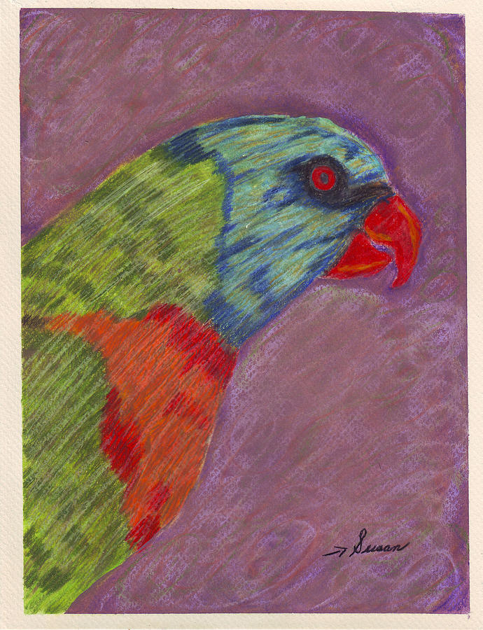 Parrot Painting - Rainbow Lorikeet by Susan Carr