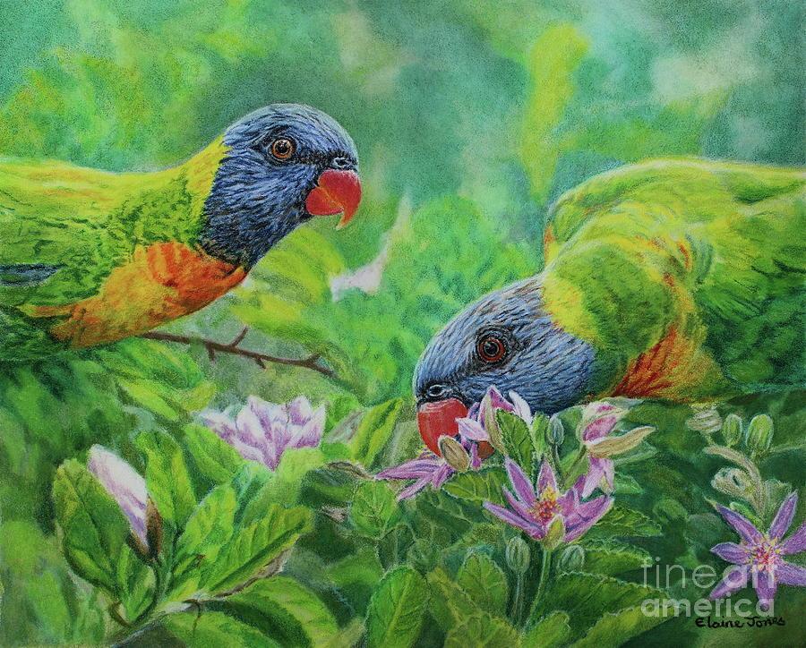 Rainbow Lorikeets by Elaine Jones