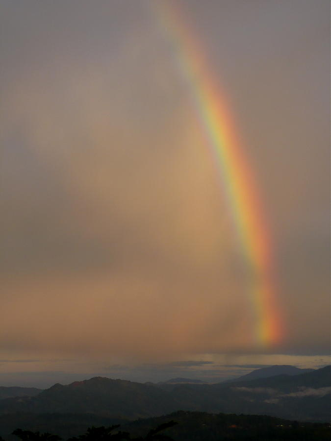 Rainbows Photograph - Rainbow No.1 by Gregory Young