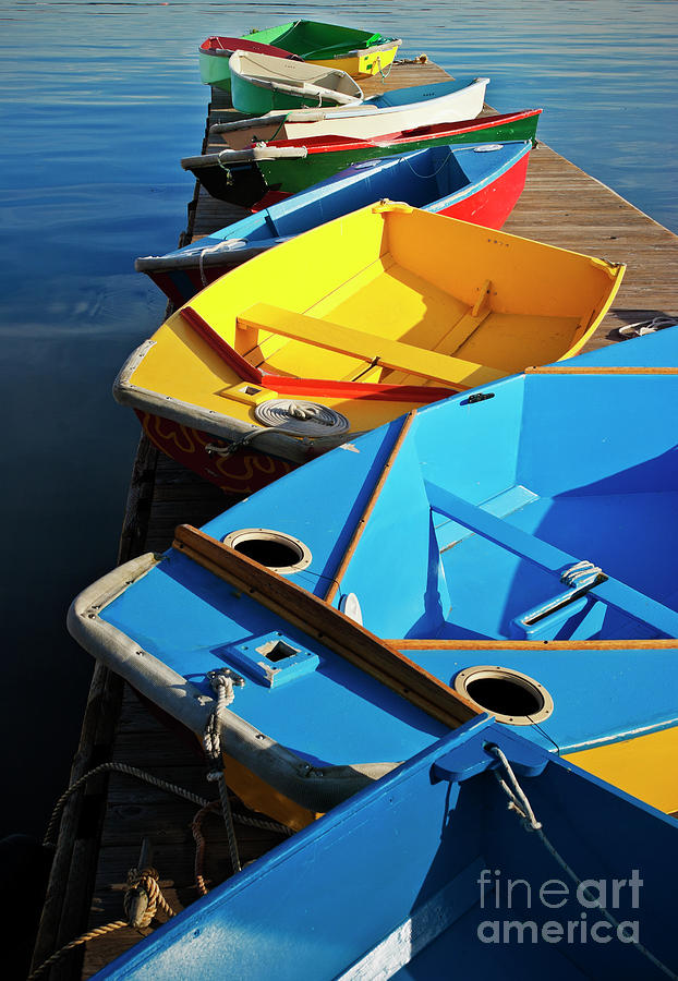 Sailing Photograph - Rainbow Of Prams by Christopher Marona
