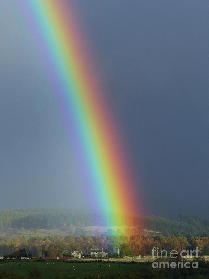 Brilliant Rainbow by Phil Banks