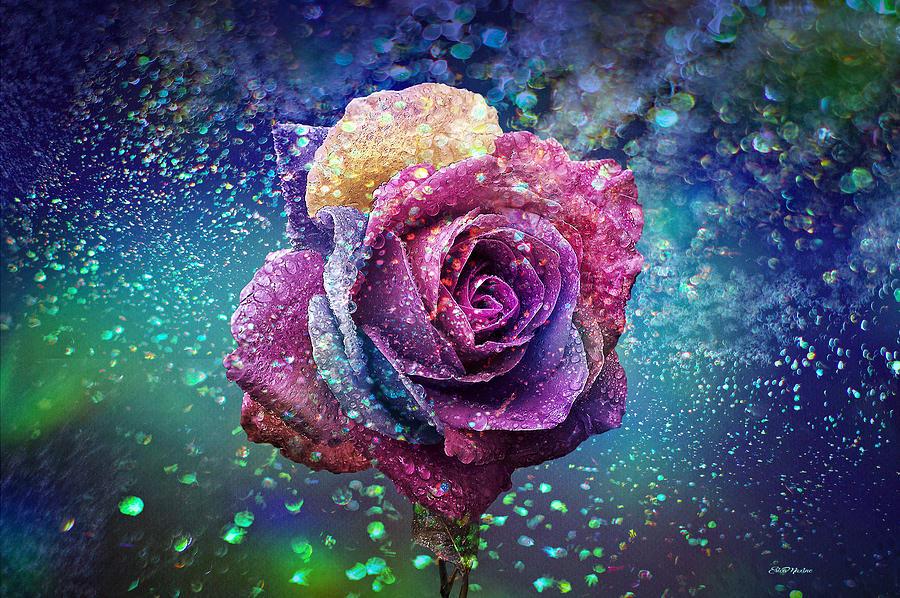 Rainbow Photograph - Rainbow Rose In The Rain by Ericamaxine Price