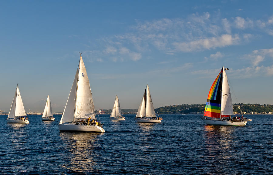 Seattle Photograph - Rainbow Sails by Tom Dowd