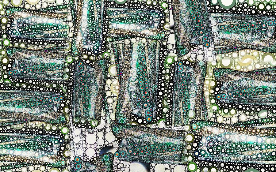 Abstract Digital Art - Rainbow Trout Thingies by Ron Bissett