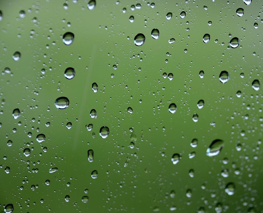 Green Photograph - Raindrops  2 by Charles Bacon Jr