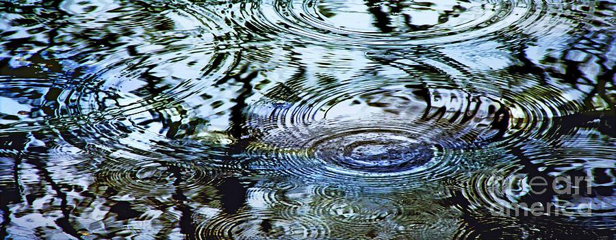 Rain Photograph - Raindrops On Water by Francesa Miller