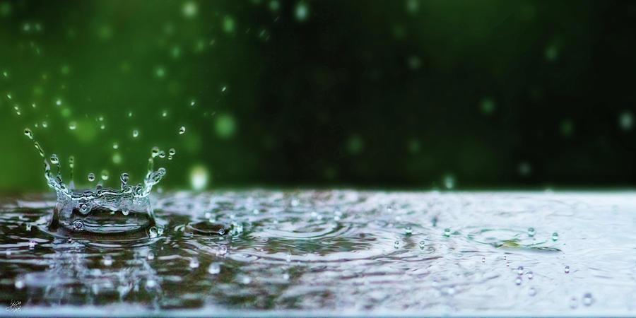 Raindrops Rejuvinate by Lisa Knechtel