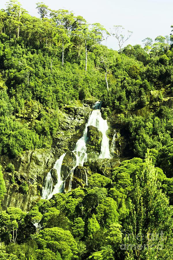 Rainforest Photograph - Rainforest Rapids by Jorgo Photography - Wall Art Gallery