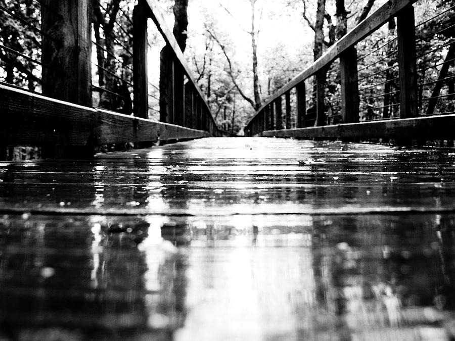 Rain Photograph - Take A Walk With Me In The Rain by Valeria Donaldson